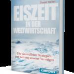 Eiszeit in der Weltwirtschaft / Daniel Stelter