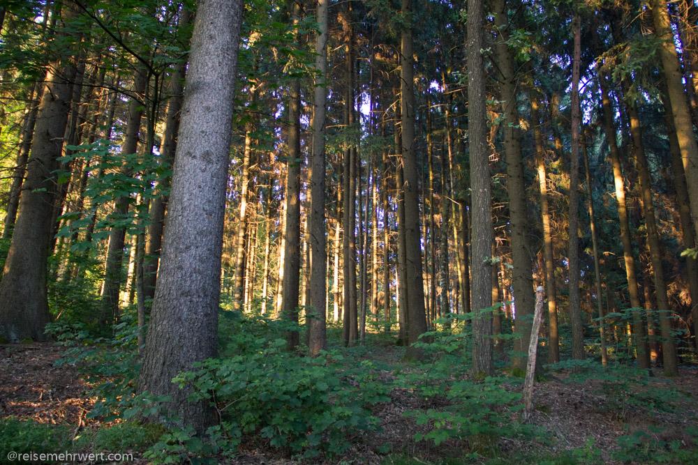 reibener hof bayerischer wald