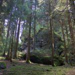 Grundlagen Naturfotografie / Fotoschule des Sehens (Hrsg.)